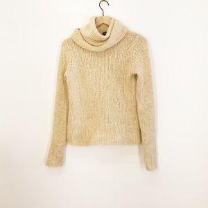 Eileen Fisher Turtleneck CowlNeck Sweater